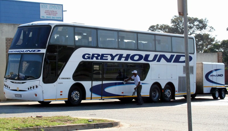Greyhound - Cape Town  Projects, photos, reviews and more