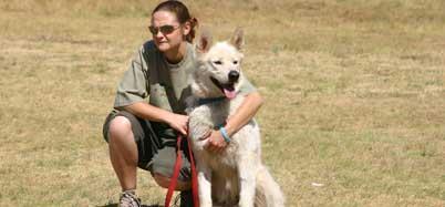 Dog Training Sandton